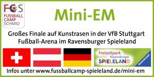 Logo_Mini-EM_VS1