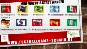 Mini-WM Wangen Zulosung